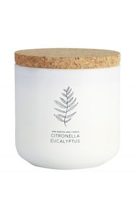 Citronella & Eukalyptus