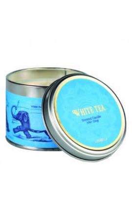 Cerabella White Tea Kerze